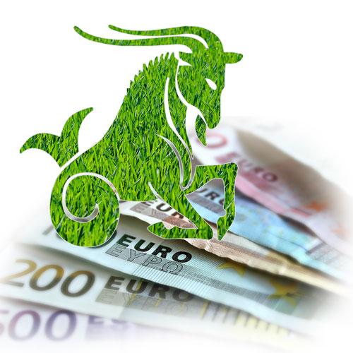 zodia capricorn bani