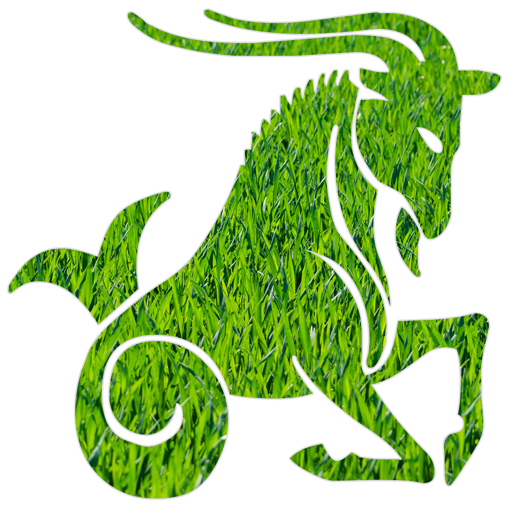 zodia capricorn horoscop online
