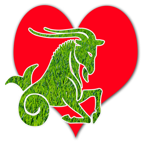 zodia capricorn dragoste
